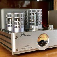 Hybrid Amplifier System